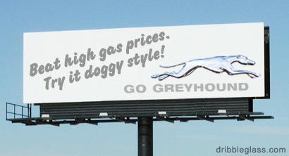 greyhound. .