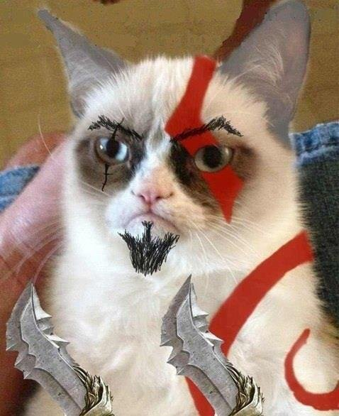 Grumpy, Cat of War. .