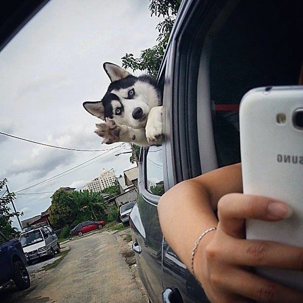 Hello. .
