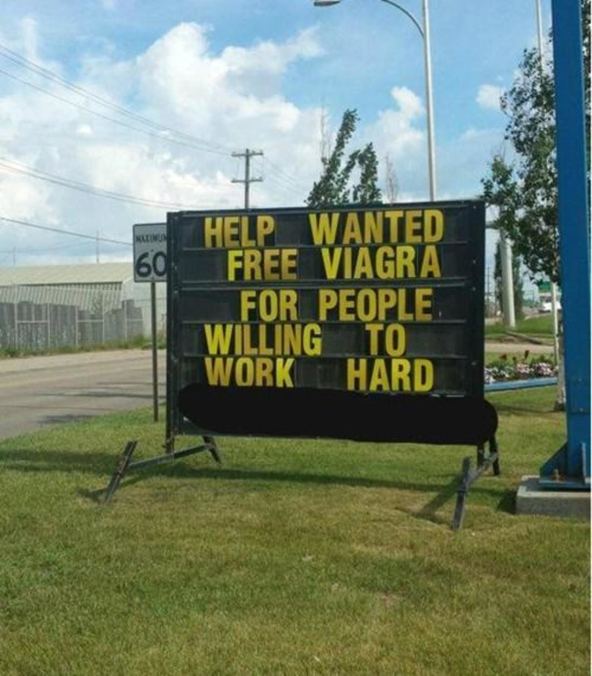 help wanted. .. sigh alright I'll do it. Help free for willing work Wanted viagra people to hard