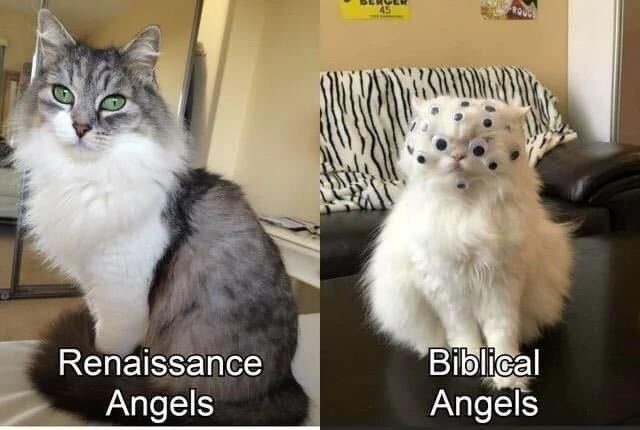 I can be your angle. .. 1 schizophrenic Jewish guy wrote in one part of the Torah that one angel looks like that, then all of a sudden everyone on the internet think that's how they're