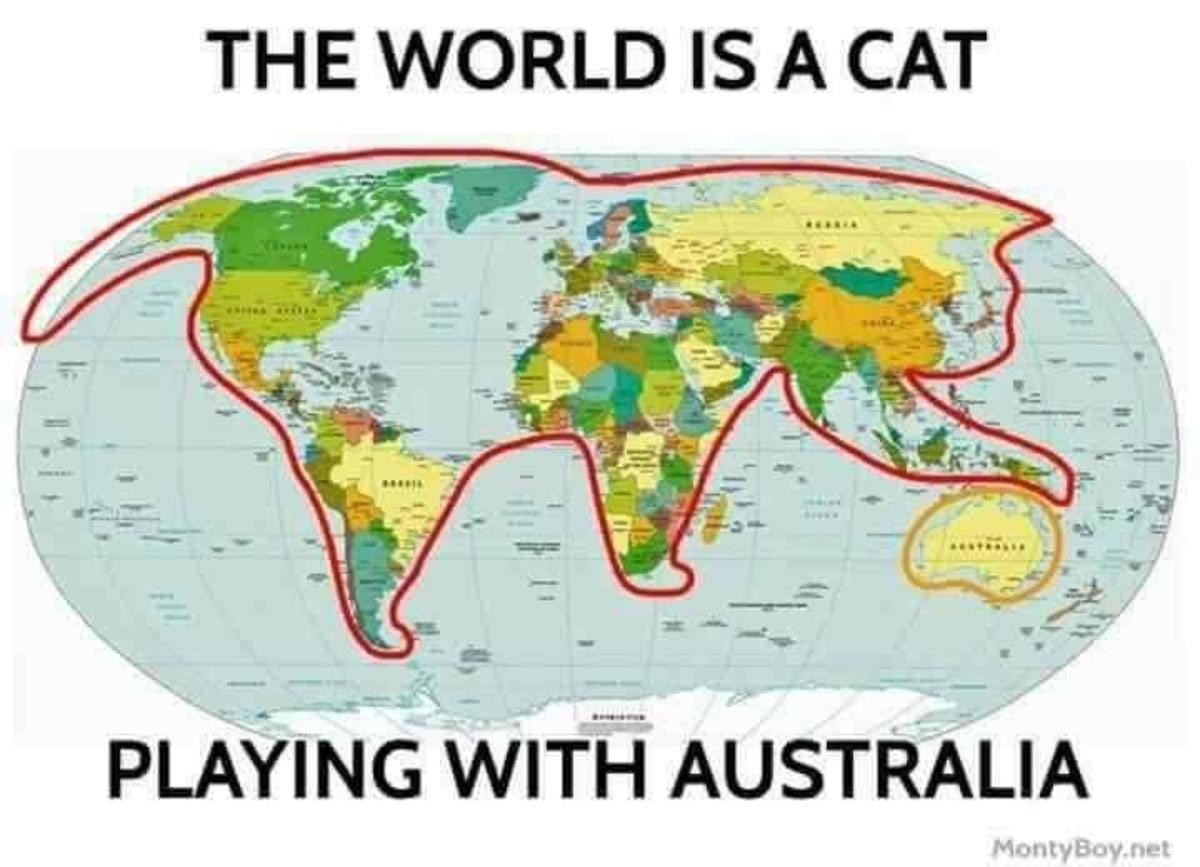 I knew it!. .. That makes perfect sense when you know the truth about cats