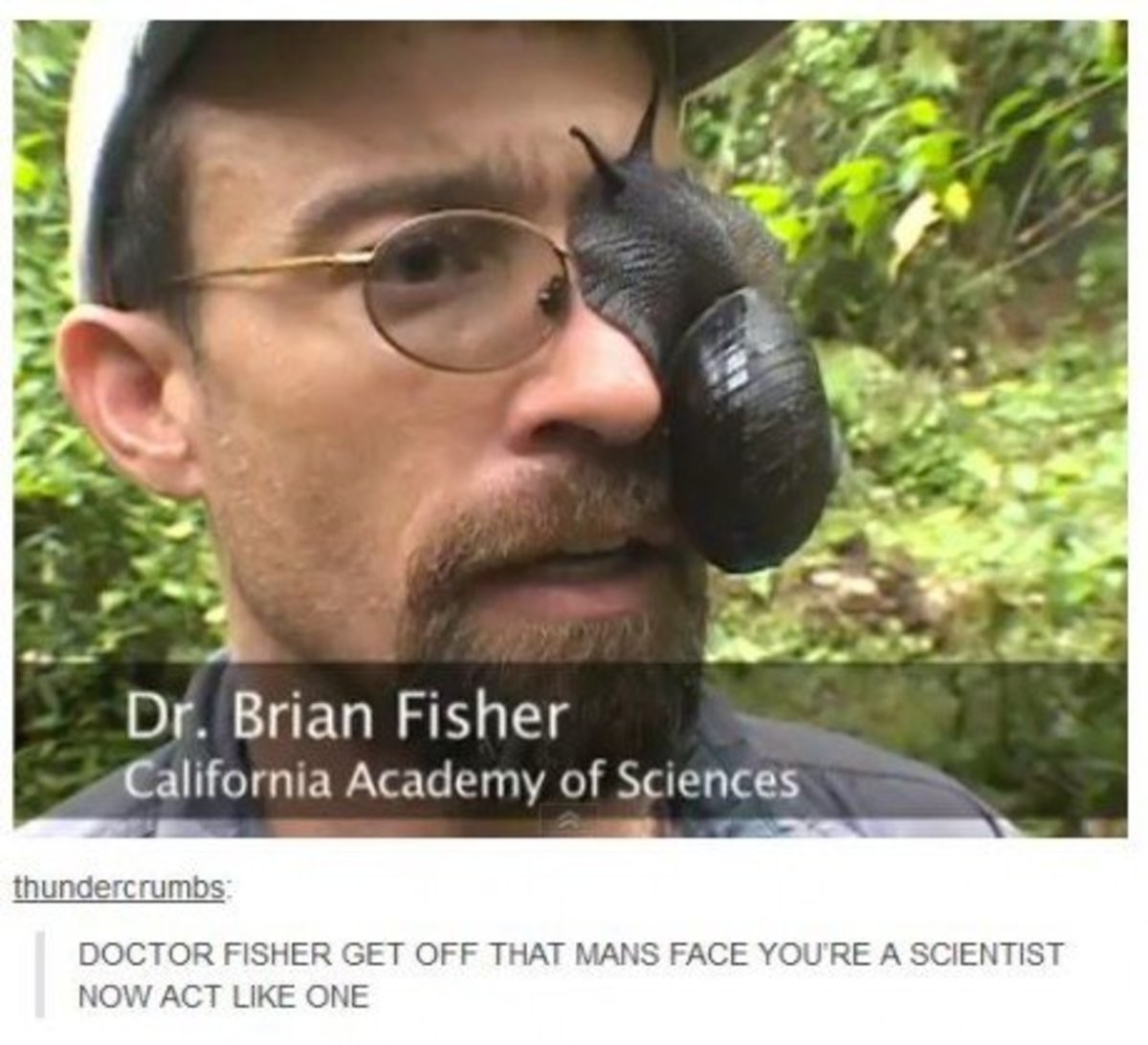 Identifies as a snail. . Dr. Brian Fisher thunder: rumba: DOCTOR FISHER GET OFF THAT MAINS FACE YOU' RE A SCIENTIST NOW ACT LIKE ONE