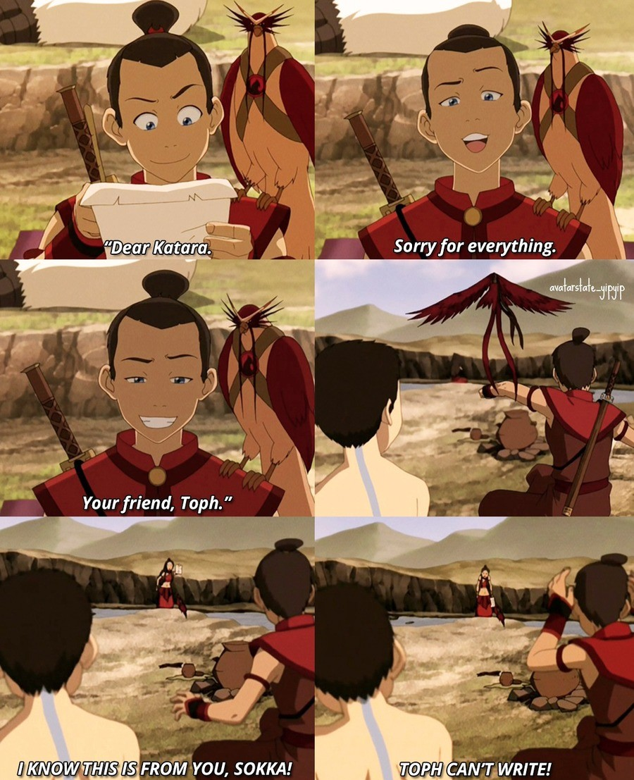 Idiot. .. You know, for a guy that's pretty smart sokka is really stupid