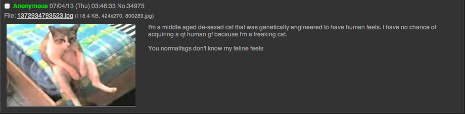 im just a cat. he's a human stuck in a cats body. PM a middle aged . -;ed cat that we genetically engineered to have human male. I have we chance of acquiring a