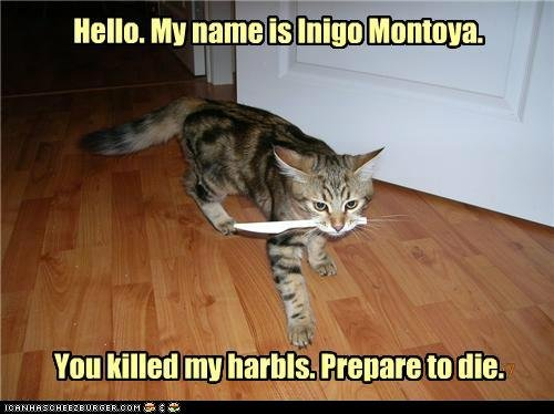 "Io Moewntoya. prepare to die. You my Ila""! SJ'. this made my day."