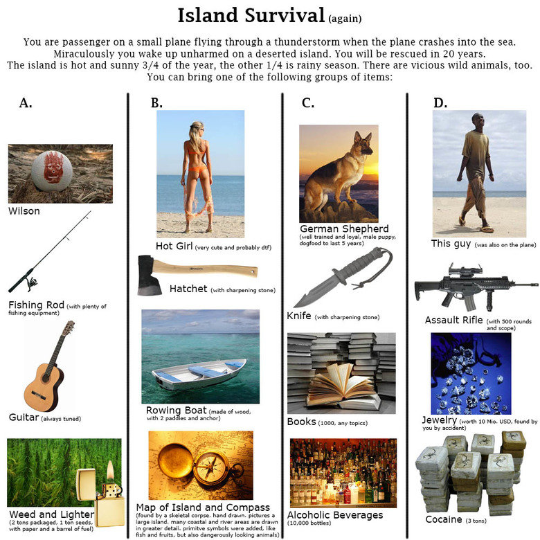 Island survival. . Island ) You are passenger on a small plane flying through a thunderstorm when the plane crashes into the sea. Miraculously you wake up unhar
