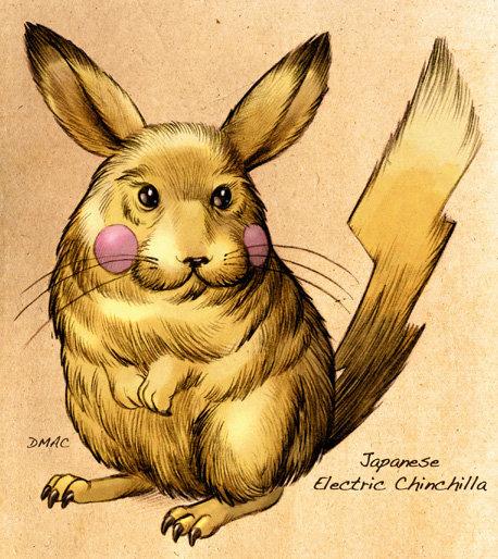 Japanese Electric Chinchilla. I choose you............. 0.0 pikachu??.