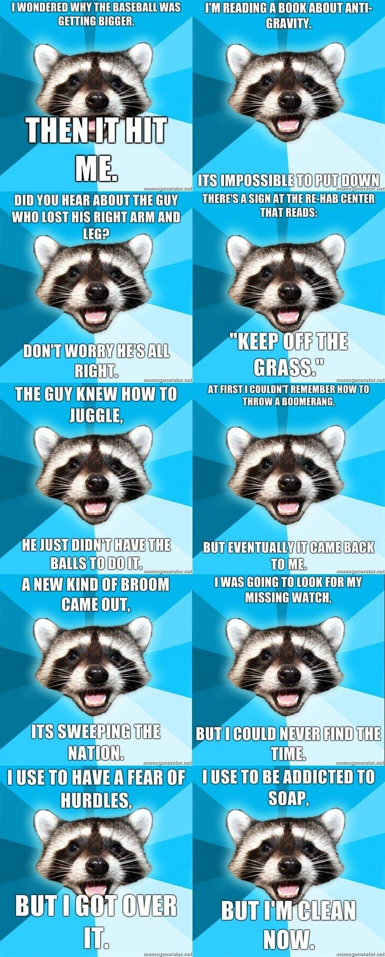 "Lame Pun Raccoon comp. OC, made all of these on memegenerator.net. I wannan WHY THEE Mu. I' M Bonn 115001 mm- Bail m THERE' S ll ""fl HT THE miimii"" miimii I up"