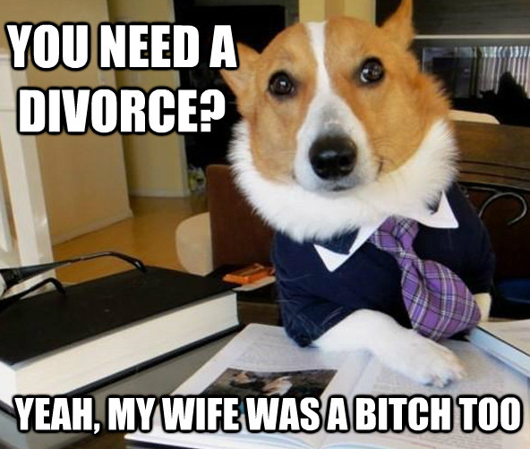 """Lawyer Dog. Don't mind me, just defibrillating an old meme.. YER"""", MY WIFE WAS ll BITCH"""