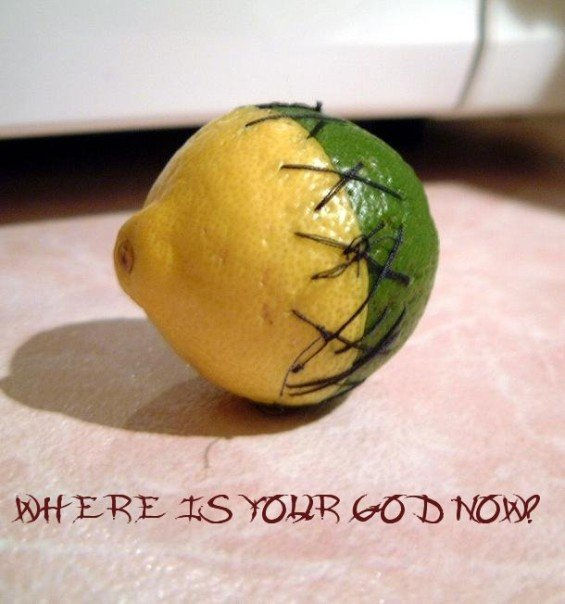 limon. yehs. its a limon... mother. . .