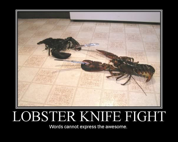 Lobster Knife Fight. Poll - How much do I love you? :3. LOBSTER KNIFE FIGHT Words cannot express the. this much!