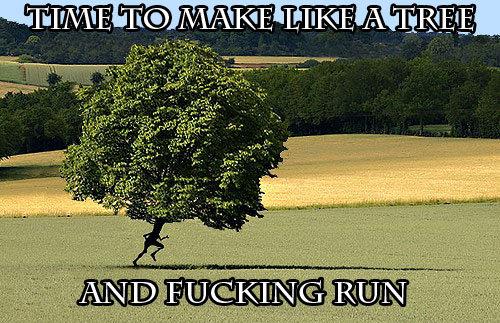 Make like a tree. . .. duh nuh duh nuh duh nuh duh nuh duh nuh duh nuh duh nuh BATMAN.