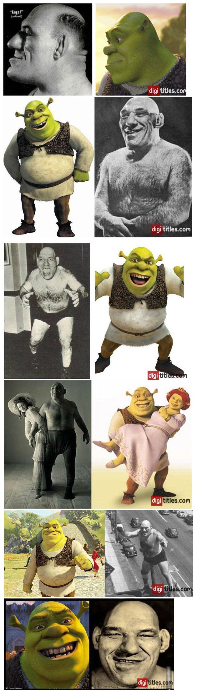 maurice is life, maurice is love. it seems our beloved shrek may be based on a real life person, details: .. Looks like he didn't check himself