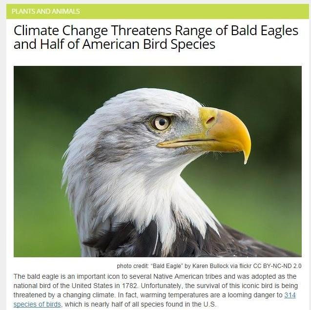 'merica. Just chilling browsing the newest news. Then i saw this. This is a message to all the 'mericans that are in Funnyjunk. You cant stop Freedom. Climate C