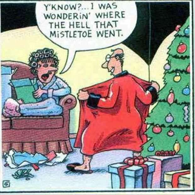 Mistletoe. . WHERE THE HELL THAT WENT.