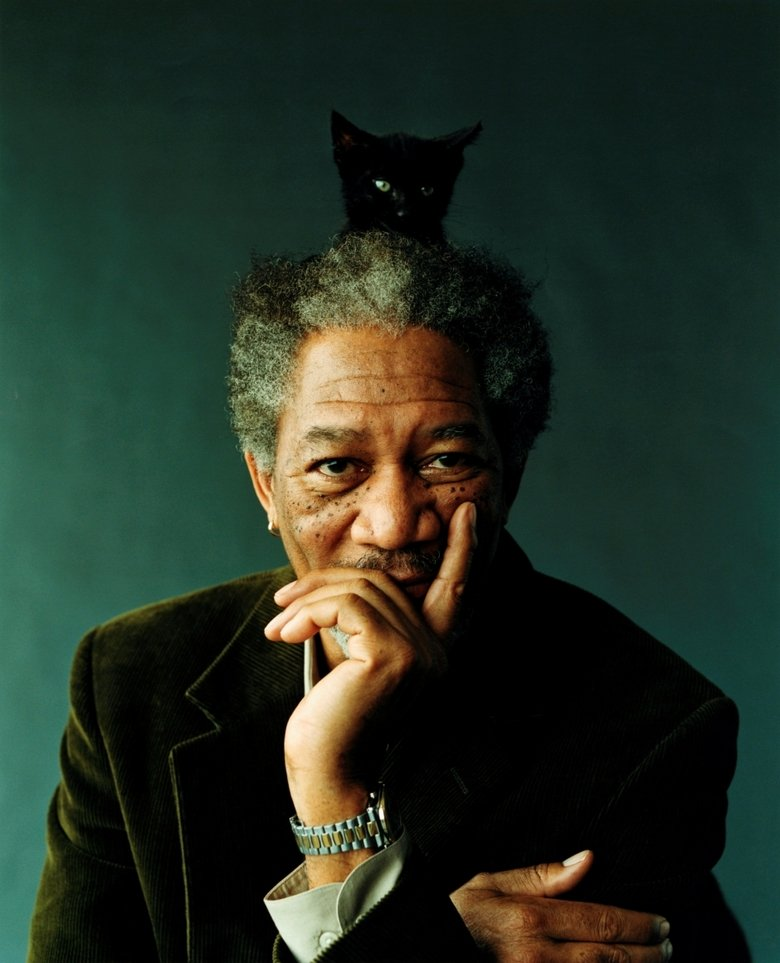"""Morgan Freeman and a Cat. Mr Freeman, it appears you have a black kitten on your head.<br /> """"My, my. I appear to have a cat upon my head. Isn't"""