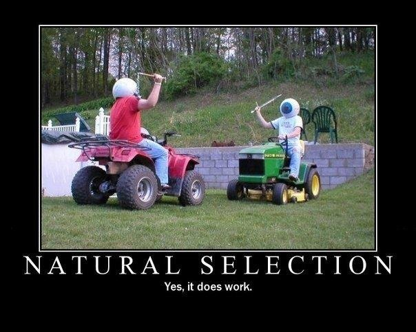 Natural Selection. . Yes, it does work