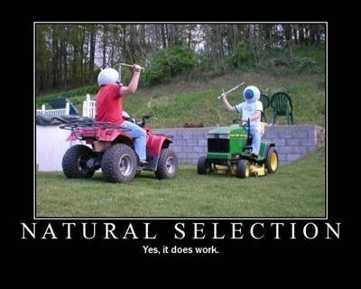 Natural selection. . Yers, it due: walk.