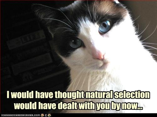 Natural Selection. 0.o. I would have though! ,', , wouldl have Malt within HUME: