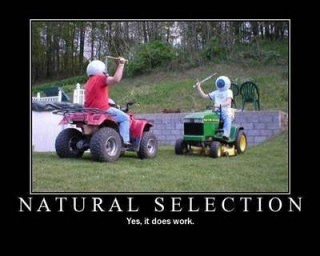 Natural selection. indeed, it work.. so ooooold...