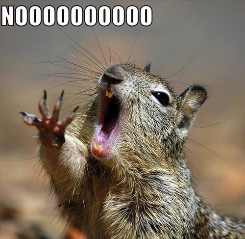 """NOOOOOOOOO. .. """"AAAAANDDD IIIIIIII-IIIIII WIIILL ALLLWAYYYS LOOOVE YOUUUUUUUUU!"""""""