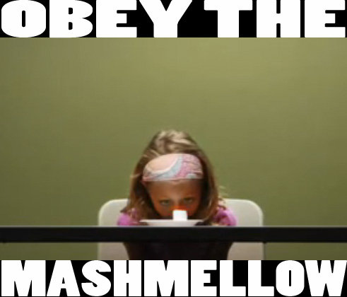 """OBEY THE MARSHMALLOW. OBEY IT!!!!!!!<br /> or watch the vid here <br /> <a href="""" target=_blank>www.wimp.com/marshmellowtest/</a>.. How about obey me and make me a goddam sammich!"""