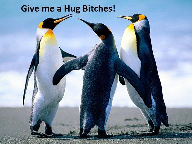 Penguin Hugz. Thumb up if you likez the penguins. . Give me a Hug Bitches!