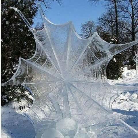 Pretty Awsome Frozen Spider Web. .
