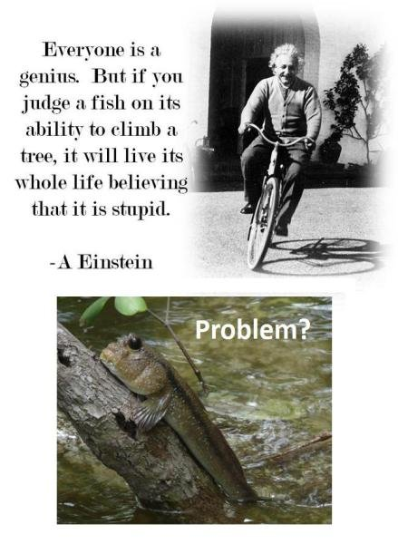 Problem?. . Everyone is a But if yore judge a f ish an its ability to elgnis a .' tree, it will live its whole life , that it is stupid. A Einstein. your move jesus