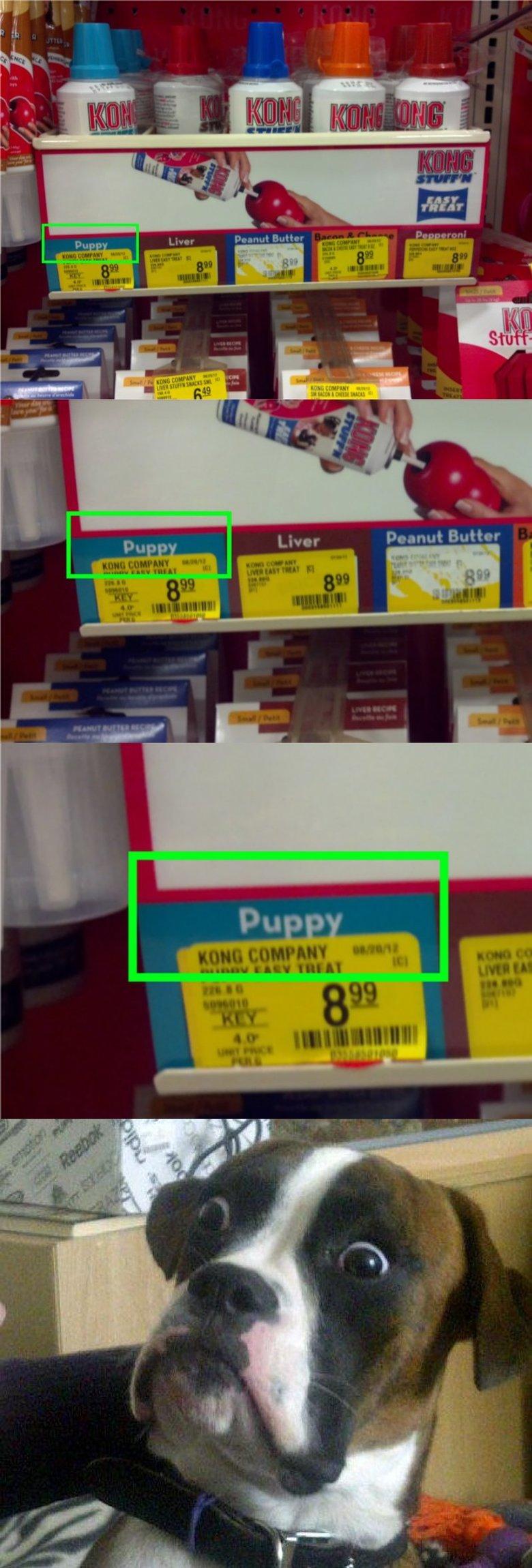Puppy Flavoured. Puppy flavoured puppy food..