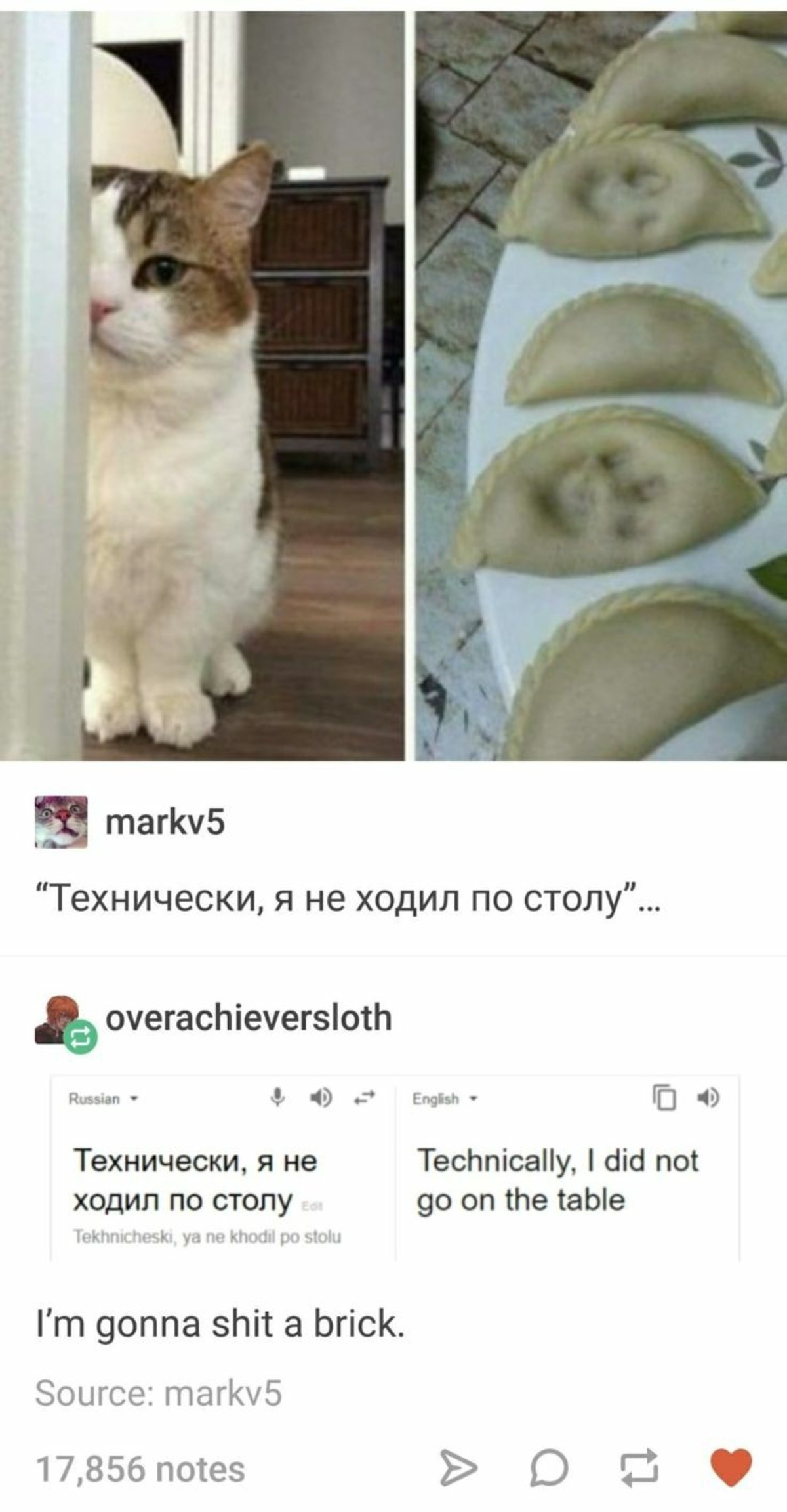 """Russian to conclusions. .. something happened in my brain and i read """"I'm gonna a brick"""" as the translation. it's WAY funnier that way"""
