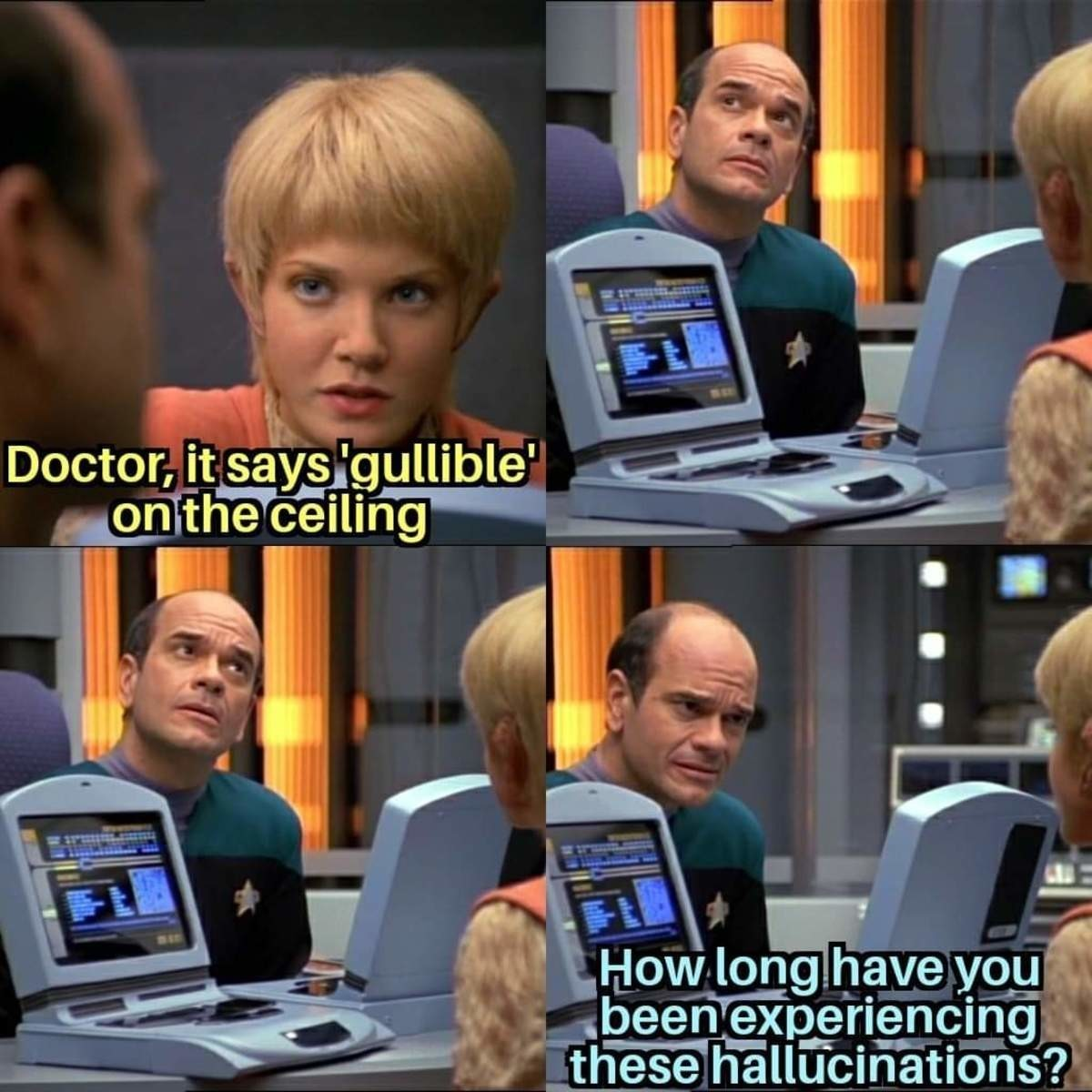 shut permissible Mongoose. .. I think the doctor is my favorite character from Voyager