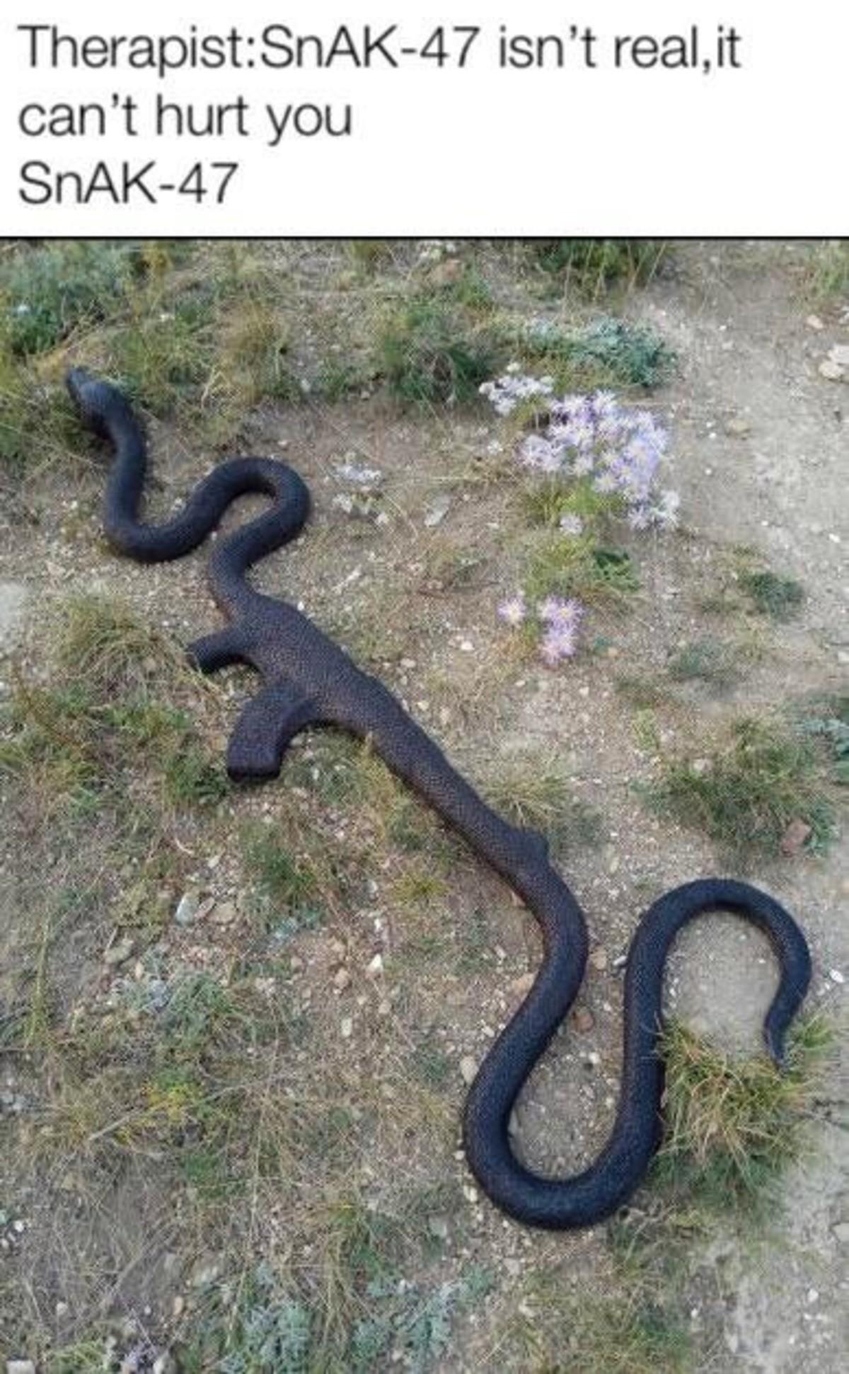 Snaykay. .. >Kill snake >Recieve gun it's like a videogame