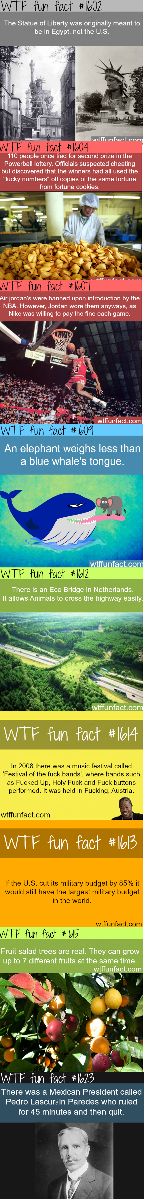Some odd facts. Sorry if seen before.. Eco Bridges are everywhere in Europe and , and they suck. Here in Denmark the only thing that has been recorded crossing it was a few mice or something..