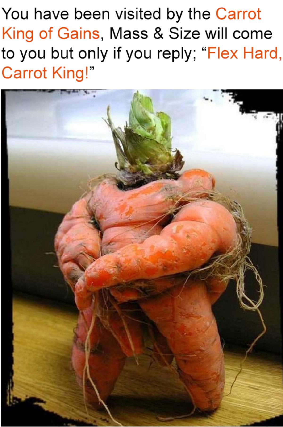 spanking jittery summary Okapi. .. Flex Hard, Carrot King!