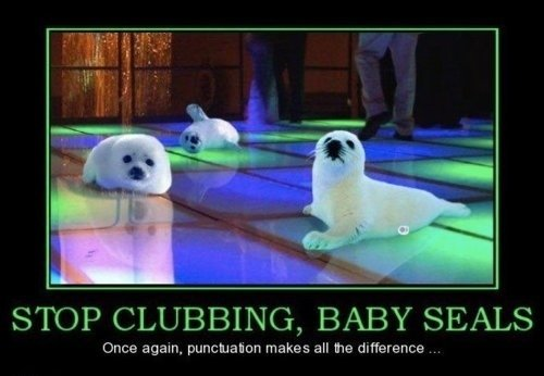 stop clubbing babyseals please. pls.. STOP CLUBBING, BABY SEALS Once again, makes all he defference ...