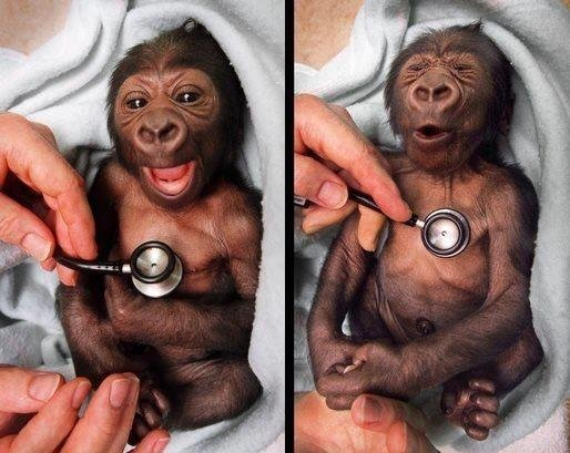 Support Medical aid For African children. .. COoooooold