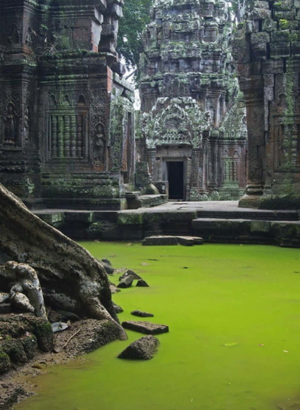Ta Prohm Temple in Cambodia.. .. That's Lost Izalith