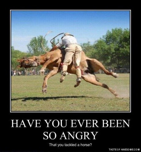 TACKLE. . HAVE YOU EVER BEEN SO ANGRY That ' a horse? TAGTEAM
