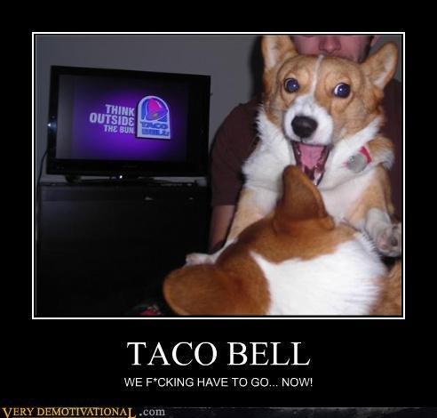 Taco Bell. . TACO BELL. lol