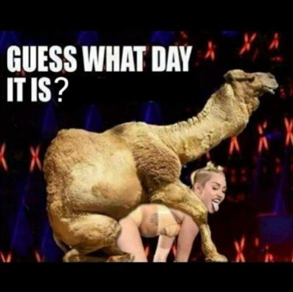 Take A Guess. . INS?. Now, pop quiz! Which one has the bigger Camel Toe?