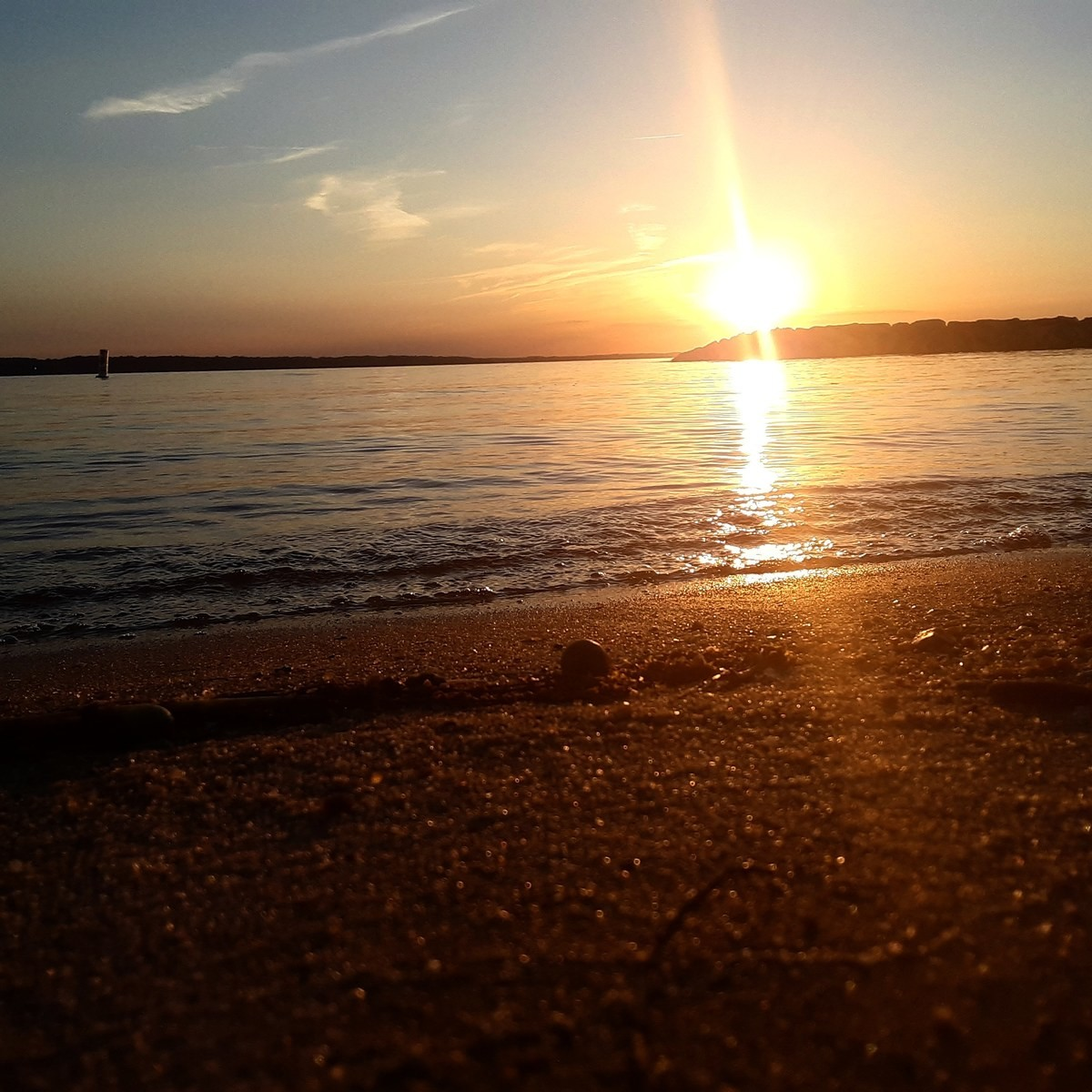 tangy tasty obese Seahorse. Sunset at Jamestown Beach.. nice quality noob