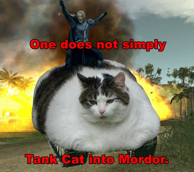 Tank Catting Into Mordor. One does not... TOO AWESOME....POSSIBLE OVERLOAD...HHNNNNNGGGGG