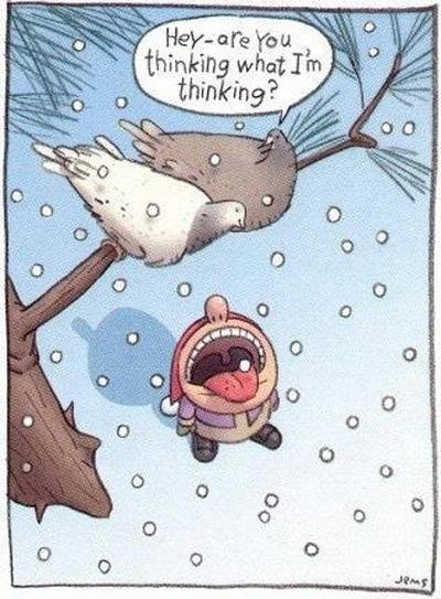 Target Practice. Remember kids, never eat the yellow snow. Or bird . Yeah. That's not good for you.. thinking (alit' l I ha I,. lillte' 'ell