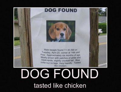 Tastes Like Chicken. . DUE FECUND tasted like chicken