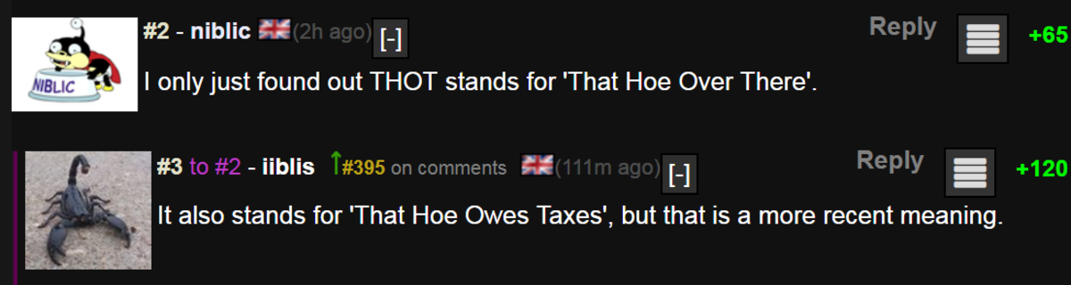 That Hoe Owes Taxes. niblic, iiblis, thot, linguistics, camgirls, tax evasion, irs, taxes, sore frightened quiet Hamster, scjake, V.anessawh <3, etymology, w