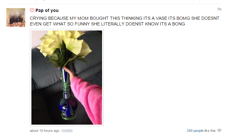 That hole is clearly for water. Not actually my ask but I screencapped this today. C) Pap of you CRYING BECAUSE MY MOM SOUGHT THIS THINKING ITS A VASE ITS SOME