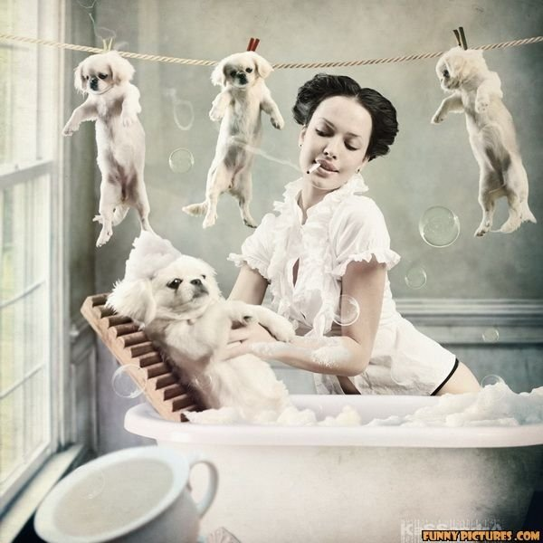 that bathtub is TINY. wait is she doing the laundry? that fur almost looks real! i bet it will smell like wet dog D:<br /> sry if repost im just mass uplo