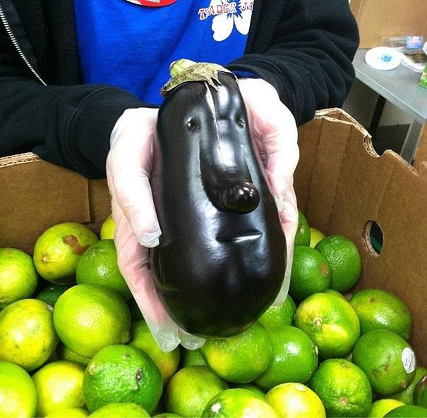 The Aubergenius. It's the Exuberant Eggplants brother! The Very Solemn Eggplant... its beautiful